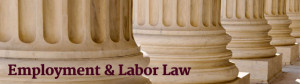 Brian P. Battaglia - Employment and Labor Law