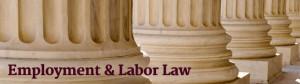 Brian P. Battaglia - Employment and Labor Law